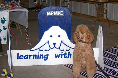 Learning with Ruby Mount Pleasant Mi kennel club