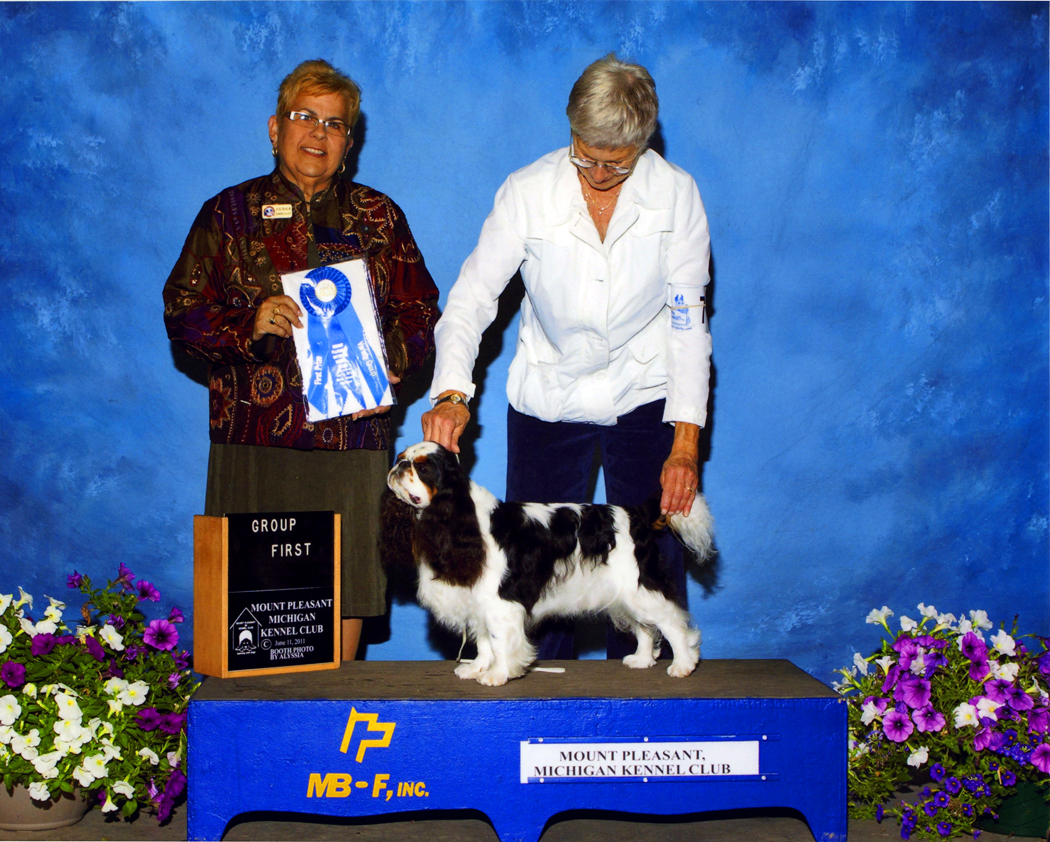 Booth Photography Inc Dog Shows